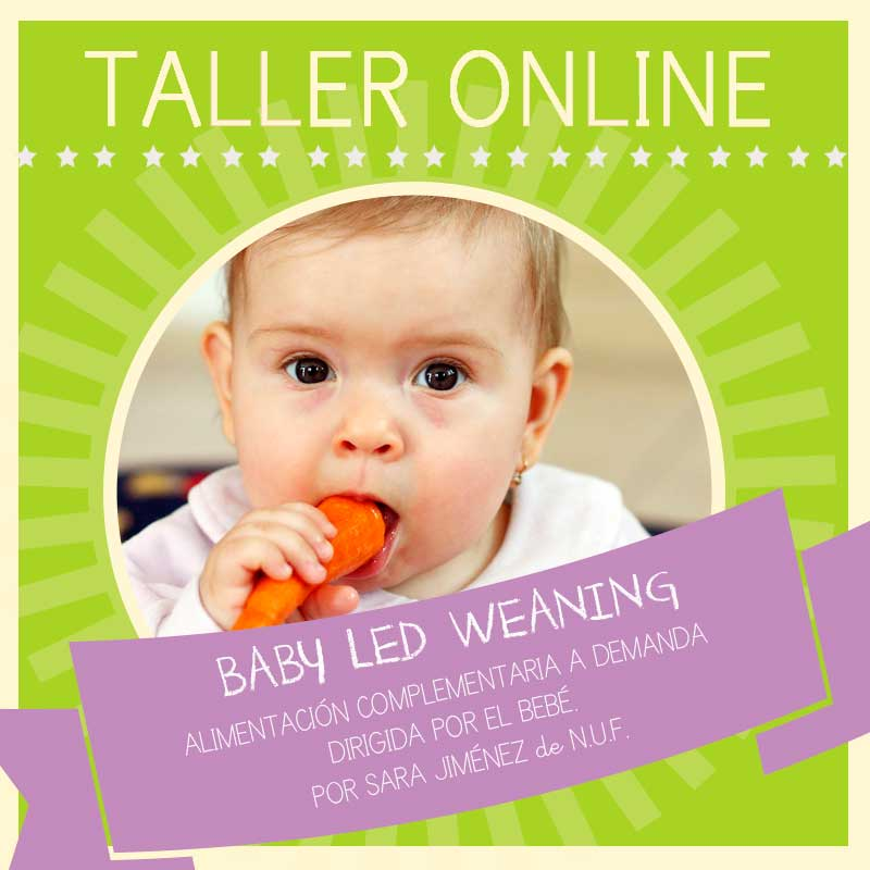 Taller ONLINE: Baby Led Weaning