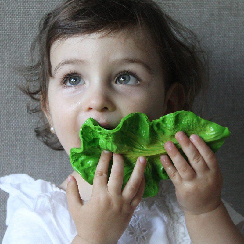 Mordedor de caucho - Kendall the Kale -