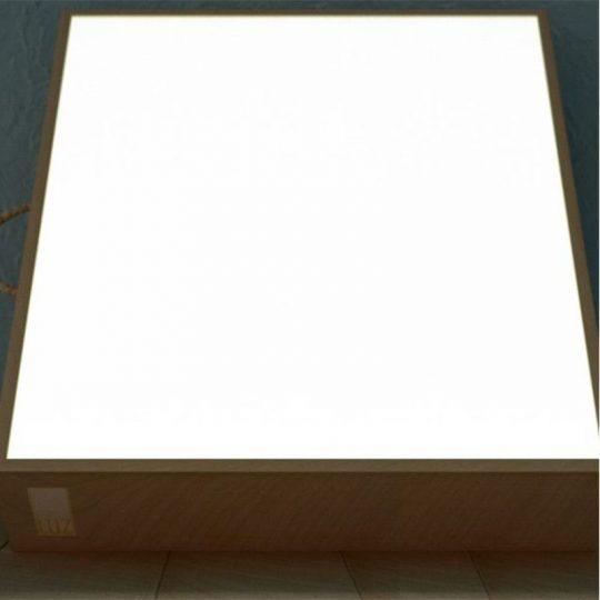 Caja de Luz Súper Extragrande