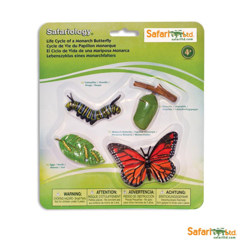 Ciclo de la Vida Safari Ltd - Mariposa -