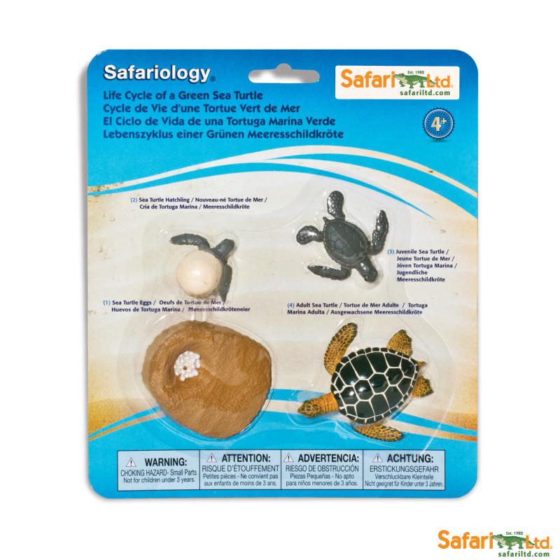 Ciclo de la Vida Safari Ltd - Tortuga -