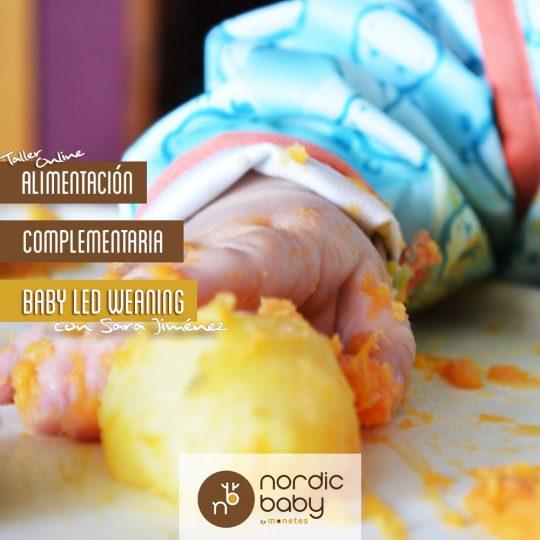 Taller online: Alimentación complementaria a demanda. Baby Led Weaning